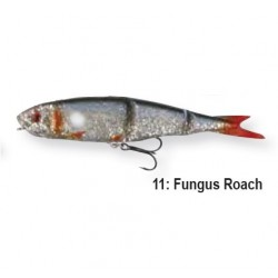 READY TO FISH 42164 11-Fungus Roach 9.5cm 12g 3szt.